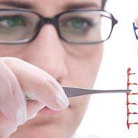 Szkeptikus Klub: GMO-e, ami génszerkesztett, és ha igen, akkor miért nem?