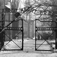 Auschwitzi rémálom