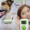 Kutyatolmács kütyü Japánból