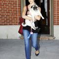 Jessica Alba és Sid, a mopsz