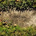 Mi is az a szimbolikus temetkezés?