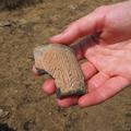 Kunszentmárton – Gyalu-puszta II. Neolit településének leletei