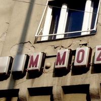 M. mint mozi