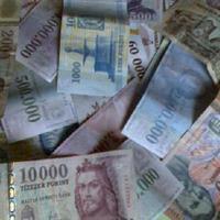 A mi pénzfánk - 1. rész