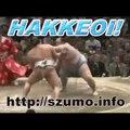 HAKKEOI! - 2016/01 [a szumo.info vlogja]