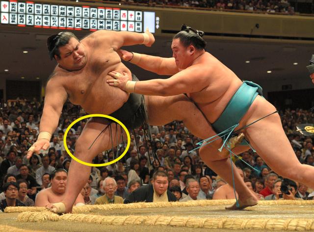 takayasu-combserules.jpg