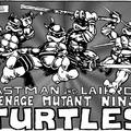 A Tini ninja teknőcök feltámadása