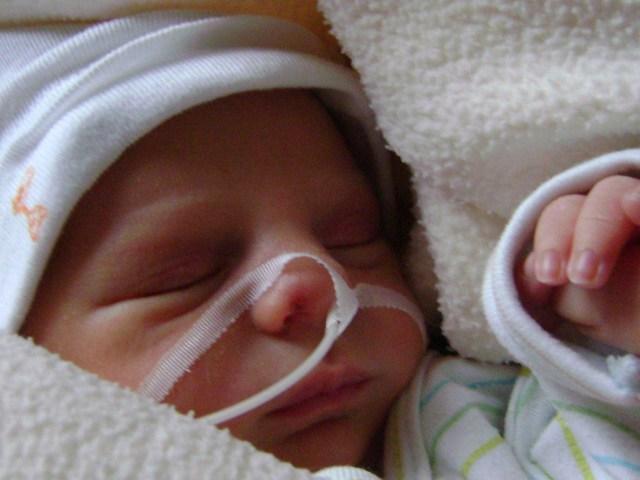 Táltos születése , a történetünk kezdete