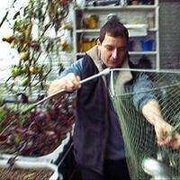 Önfenntartó ökoszisztéma a hátsókertben