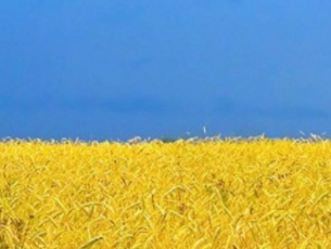 ukrán oktatási törvény - 7. cikk