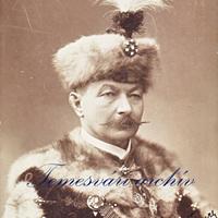 gróf Wickenburg István fiumei kormányzó portréja