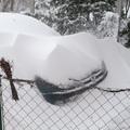 Megúsztam a hófúvást...
