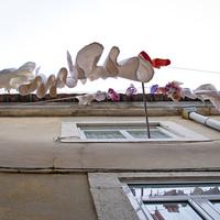Shivan Askayo: Portugáliai teregetések