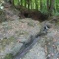 Apátkúti-patak völgye (Visegrádi-hg.)