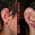Füljavítás