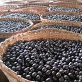 Az Acai bogyó Hollywood szuper élelmiszere