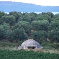 Macedónia, Albánia, Montenegró - Két hét a Balkánon: 6.nap Novosela - Durres - Tirana - Kruja - Barbullush