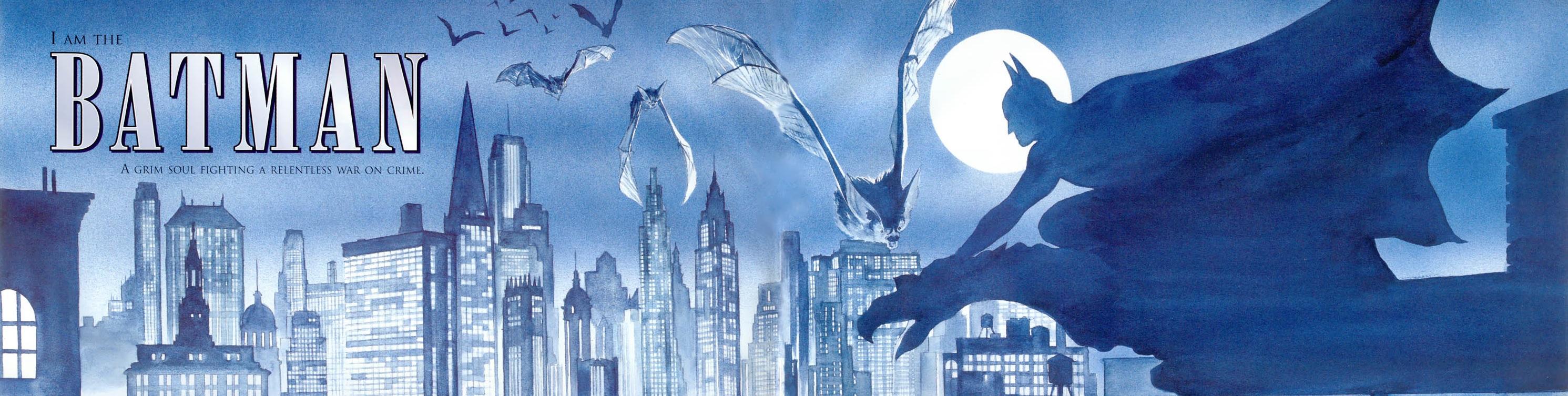 Képregény: Batman - Háború a bűn ellen (War on Crime)