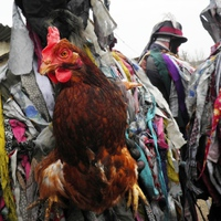 Újságcikk a 2015-ös tikverőzésről - Fejér Megyei Hírlap Online