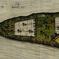 Szőlőskertek a Margit-szigeten