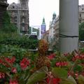 Szent Ferenc újra a Ferencieken // St. Francis Ferenciek Square again