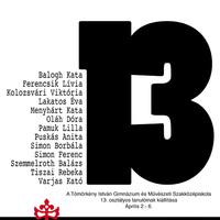 Meghívó 13.IPM a Szte TIK-ben