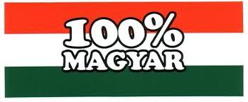 100szazalek-magyar.jpg
