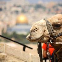 Top 13 látnivaló Izraelben