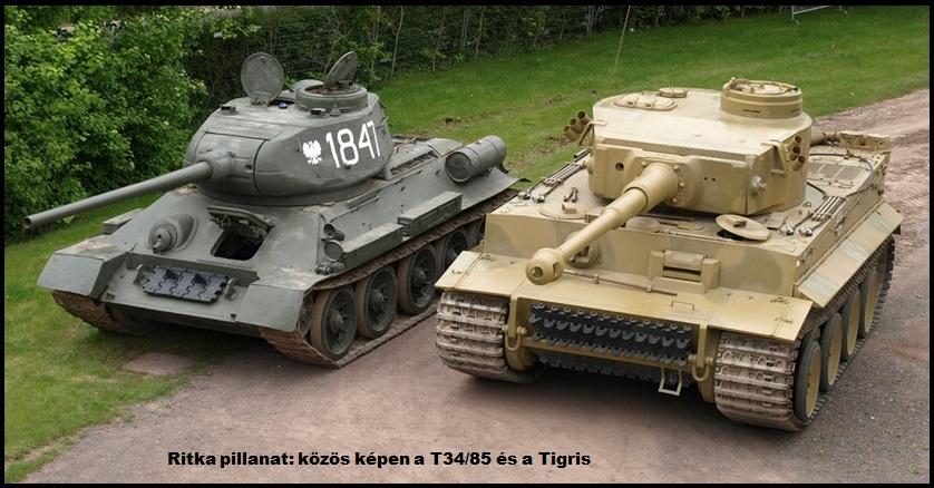 tiger_t34.jpg