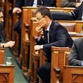 173. Hogyan lesz kisebb a parlament?