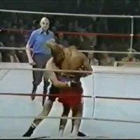 TD|HISTORY: 41 éve ezen a napon öt embert vert le George Foreman (videó)