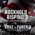 TD|MMA: UFC 199: Rockhold vs. Bisping 2 élő közvetítés