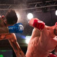 TD MMA: Itt vannak az éjjeli Bellator-kivégzések