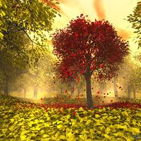 Itt van az ősz...