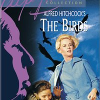 Madarak (The Birds) 1963