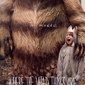Ahol a vadak várnak (Where the Wild Things are) 2009