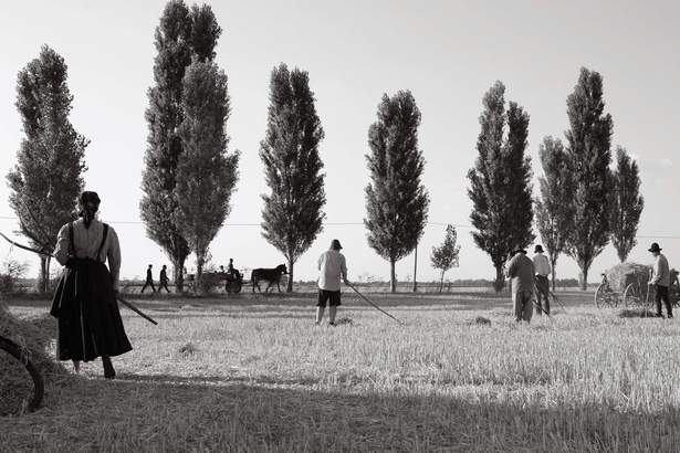 1945-2_9togk6ga.jpg
