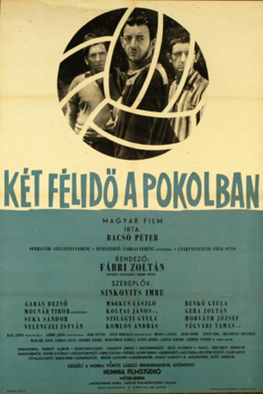 ket_felido1.jpg