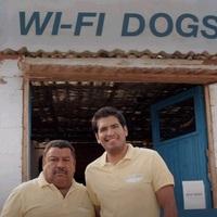 Bérelnél WiFi-kereső kutyát?