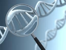 genetikaivizsg.jpg