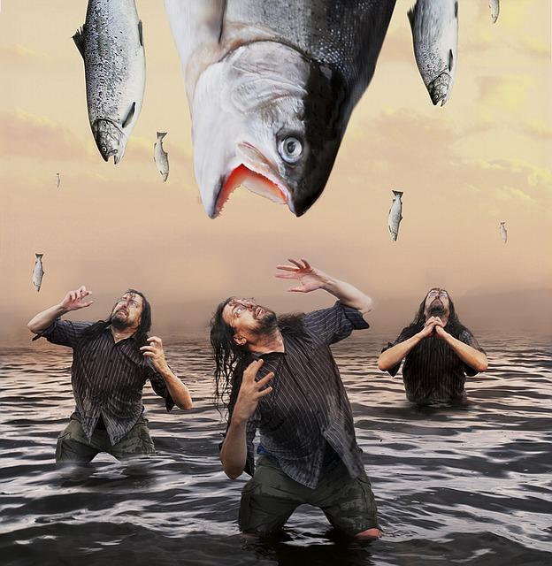 fish-1358427_640.jpg