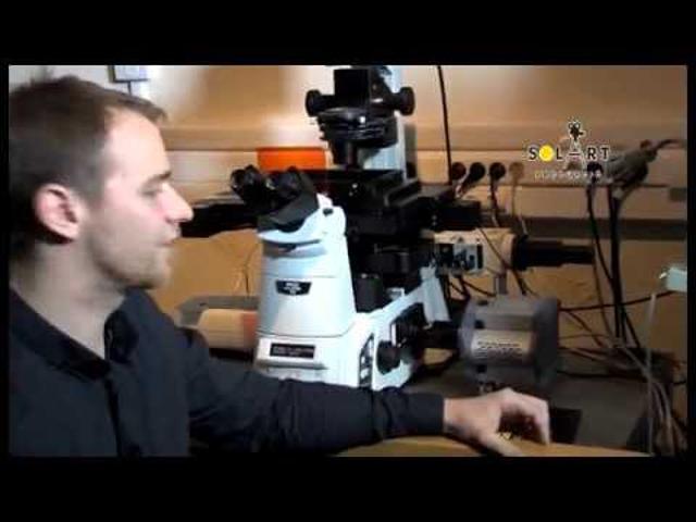 Parányi részletek birodalma - a Nikon szuperfeloldású mikroszkópia