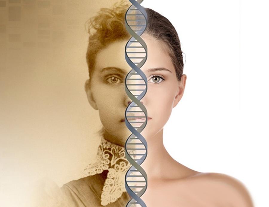 epigenetika_transzgeneracios_atadas.png