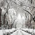 Hogyan kerüljük el télen a baleseteket?