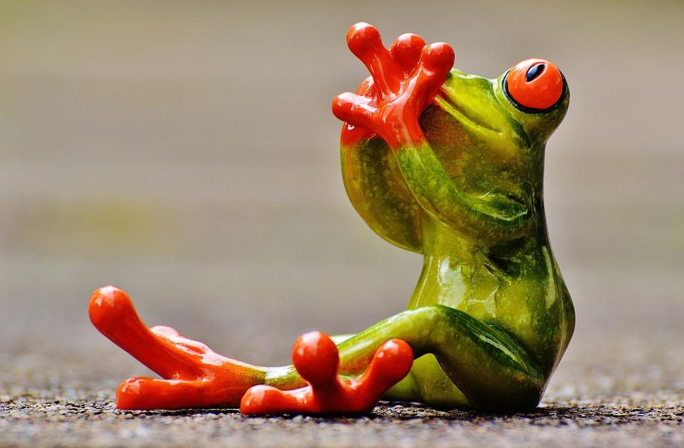 frog-1274754_960_720.jpg