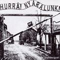 holokauszt-tagadás: én? malacot?!
