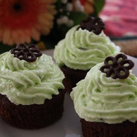Csokis-mentás cupcake