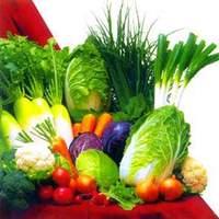 Káposztaleves  - minta étrend