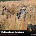 Hétfőn véget ér a The Walking Dead 5. évada