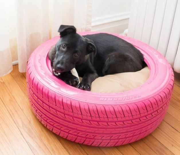 kutya ágy